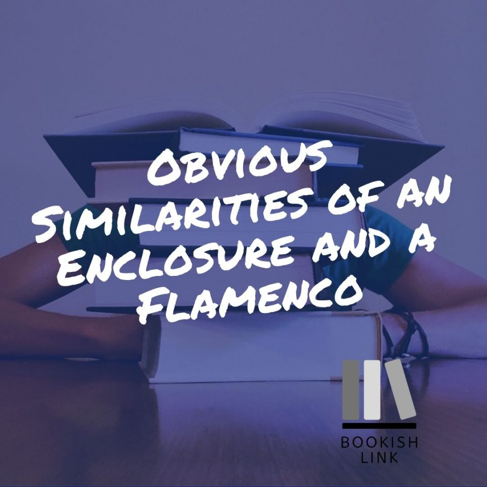 Obvious Similarities of an Enclosure and a Flamenco